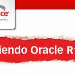 Descubriendo Oracle R12 en Oracle Argentina